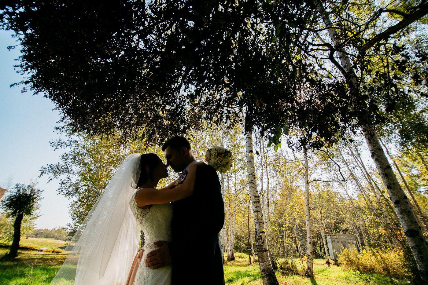 wed-2014-09-20-0119_s